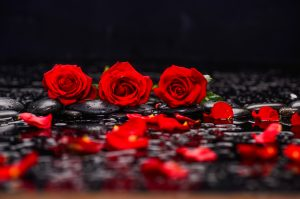 Still life with three red rose.petals and therapy stones